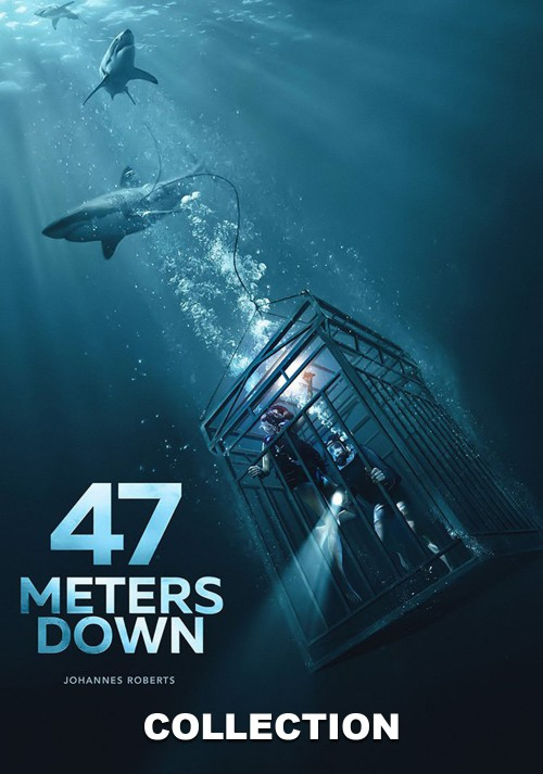 47-Meters-Down901cad3e198e8dbe.jpg