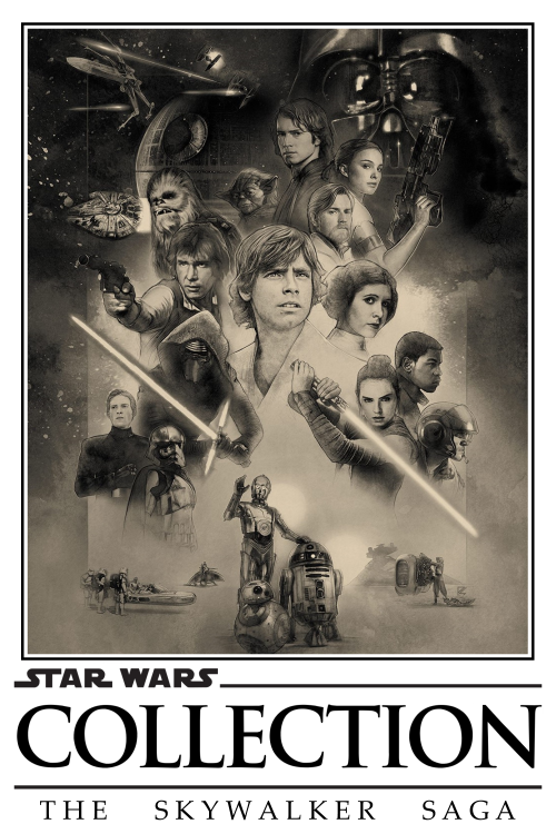 Star-Wars-Collection-The-Skywalker-Saga-Vesion-23424fbaea0c78249.png