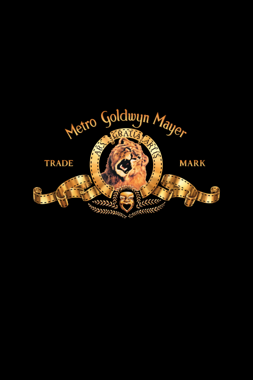 MGM-Version-29a8ee46c7e158b5c.png