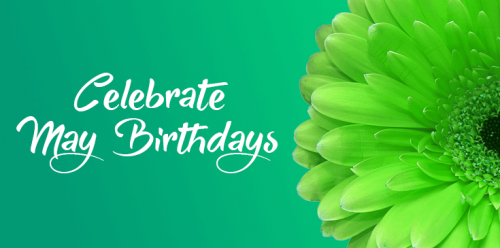 may birthday in  hd free download