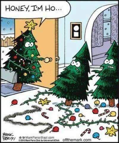christmas-tree-memeb0f48411425be75f.jpg